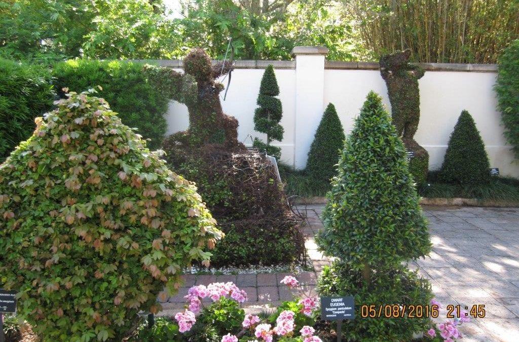 Senior Ministry Trip to Botanical Gardens
